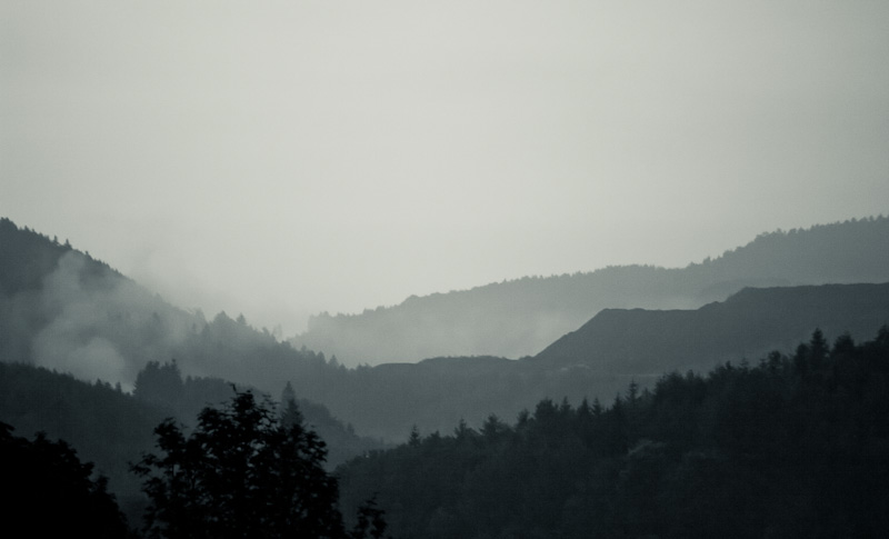 Photo of the Day: Foggy morning