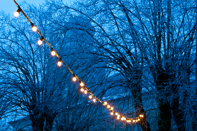 Photo of the Day: Light Chain