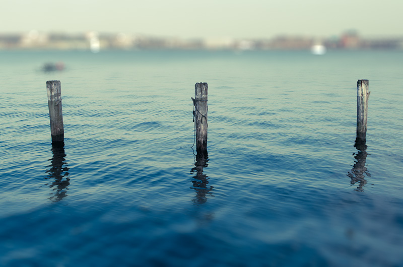 Photo of the Day: Poles