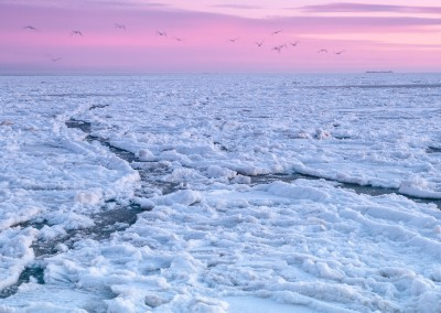 Gefrorene Nordsee bei Dagebüll 2012