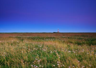 Leuchtturm Westerheversand - 2014
