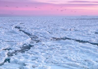 Eis auf der Nordsee, Dagebüll - 2012